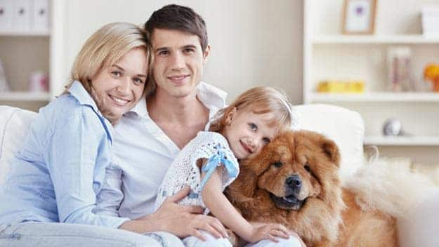 Wills & Trusts dog-young-family Direct Wills New Scarborough